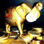 elefante323