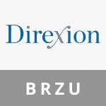 ETFDirexion Daily MSCI Brazil Bull 2X SharesBRZU